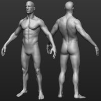 Hi res Male body model
