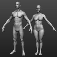 Hi res male and female body