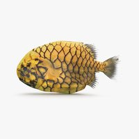 pineapple fish model