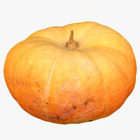 pumpkin real model