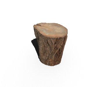 3D model scanning trunk
