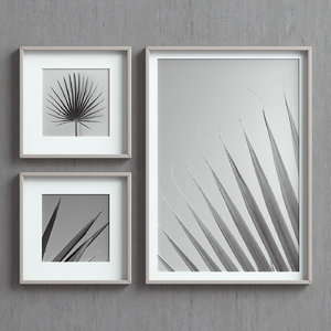 picture frames images 3D model