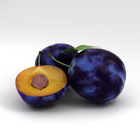 3D plum food fruit model