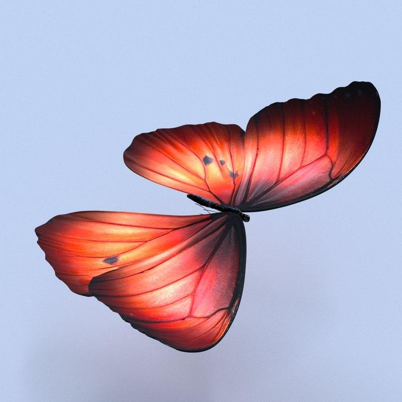 fantasy butterfly 3D