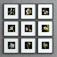picture frames set -40 3D