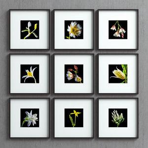 picture frames set -40 3D