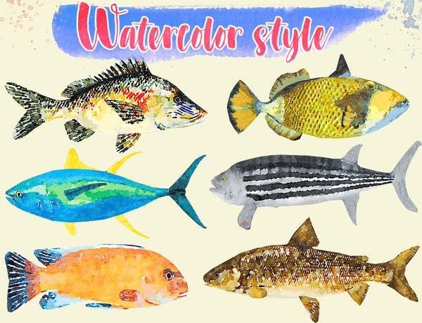 fish illustration 4 model