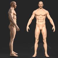 3D Rigged Male Muscular GAME READY model