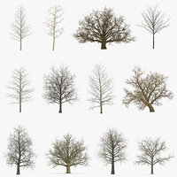 3D winter trees 2