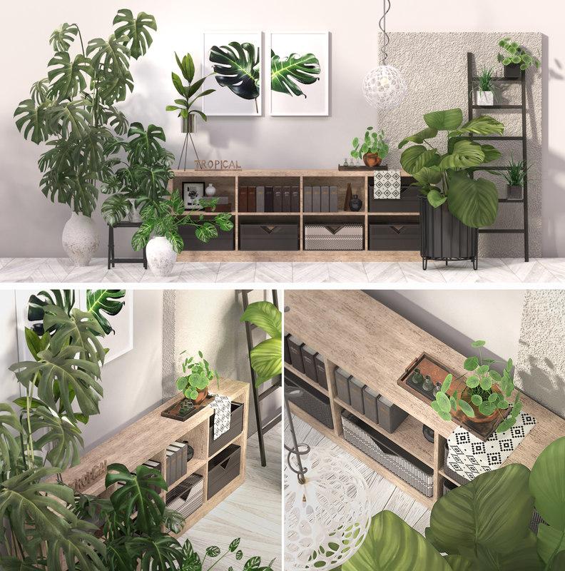 3D model tropical indoor plant