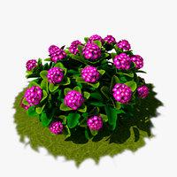 01 flower 3D