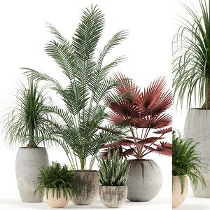 3D plants 122