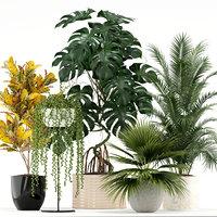 plants 124 3D model