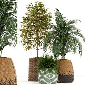 3D plants 126 model
