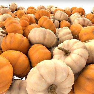small pumpkins 3D model