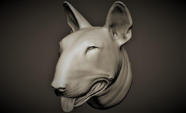bull terrier model