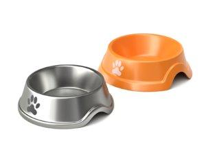 3D model bowl dog metal