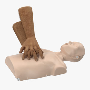3D aid training cpr dummy model