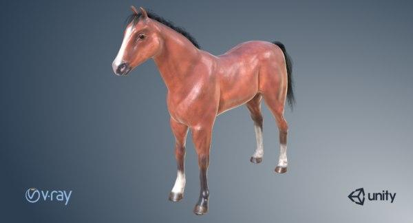 animal horse mammal 3D model