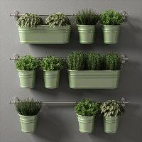 3D plants set 08 model