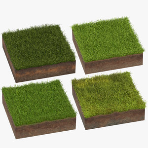 3D model grass cross sections