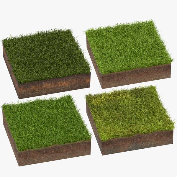 3D model grass cross sections