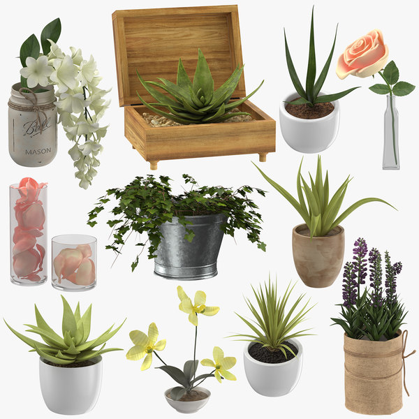 3D decoration plants