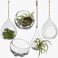 3D terrariums plant hanging