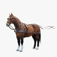 Horse with Harness