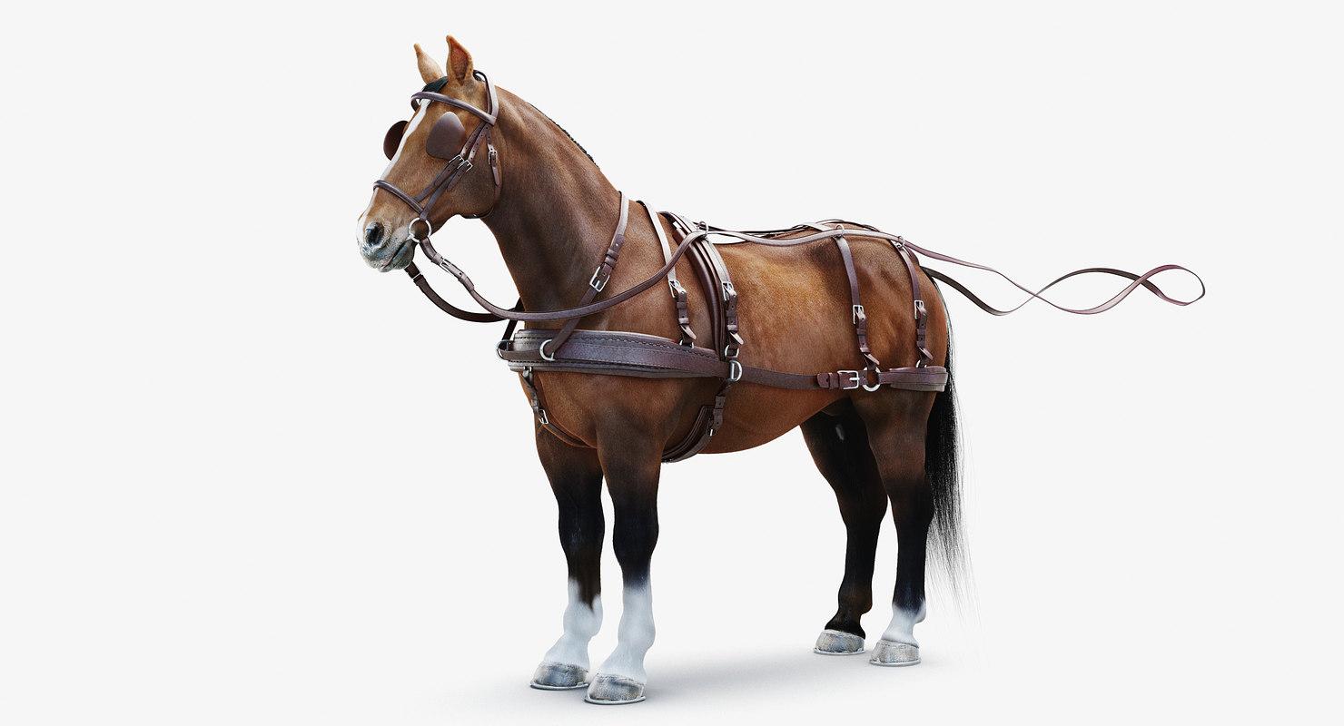 3D realistic horse harness
