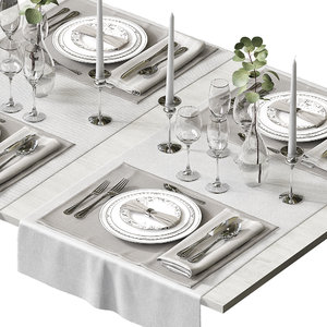 table setting model
