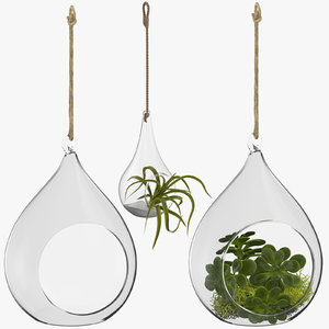 hanging terrariums 3D model