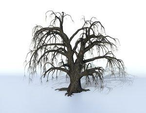 3D model old oak tree
