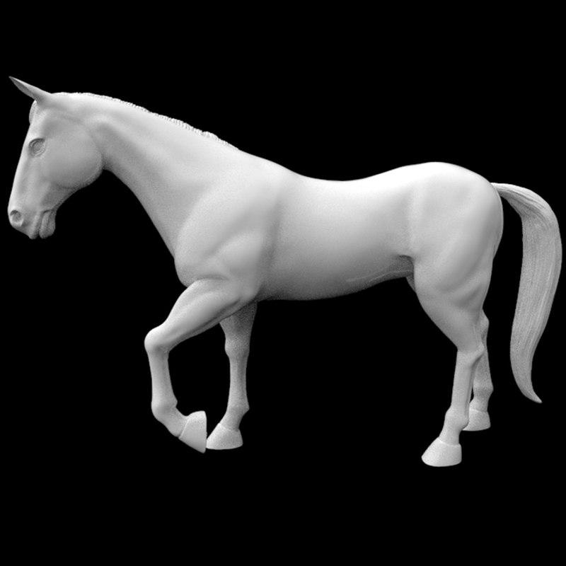 3D turkmen horse