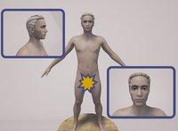 3D model male naked