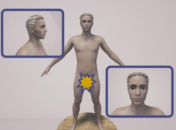 body genitals model