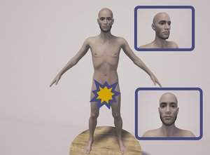 body genitals 3D model