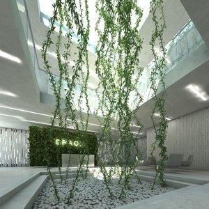 3D plant epipremnum aureum