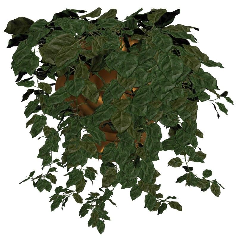 3D model ivy vines