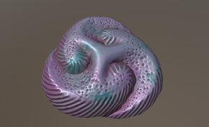 tribrachidium 3D model