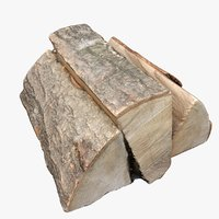 3D model scan wood logs