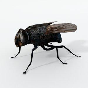 fly 3D