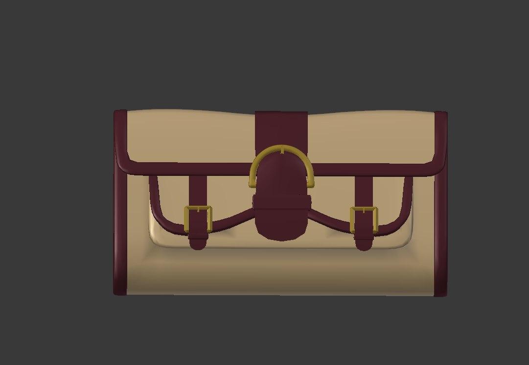 3D accessories bag model