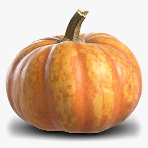 3D pumpkin subdivision displacement model
