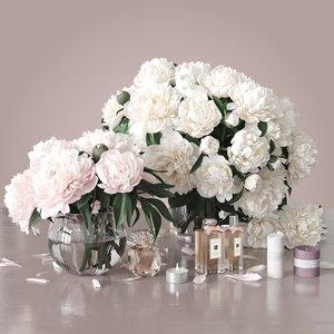 flowers peonies 3D