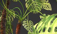 3D plant pbr ar