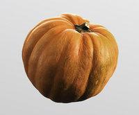 Pumpkin, high polly model, #7
