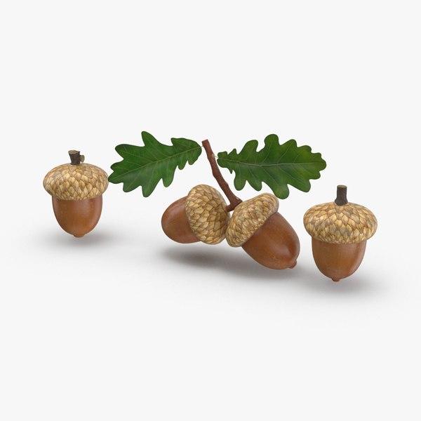 acorns 3D