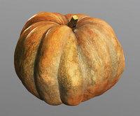 Pumpkin, high polly model, #5