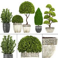 3D plants garden model